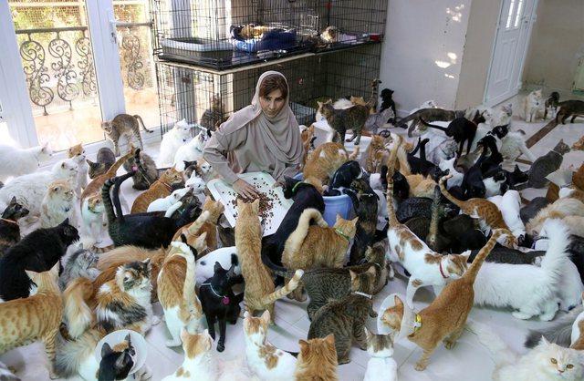 Gruaja me 500 mace e qen: Kafshët janë më besnike se njerëzit